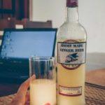 Prorider Trip Sri Lanka Drink Homemade Ginger Beer 681x1024