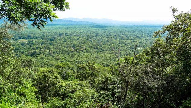 Prorider Trip Sri Lanka Frumusețe Dambulla Sigiriya Vedere de sus