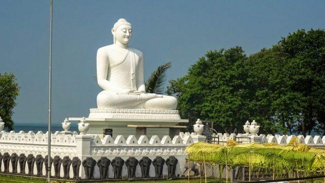 Prorider Trip School Kite Sri Lanka Buddha Puttalam