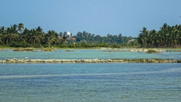 Prorider Trip School Kite Sri Lanka Lagoon Peace