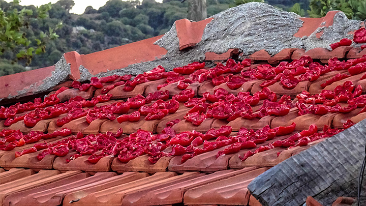 Prorider Story Trip Turkey Gokceada Eselek Village House Roof