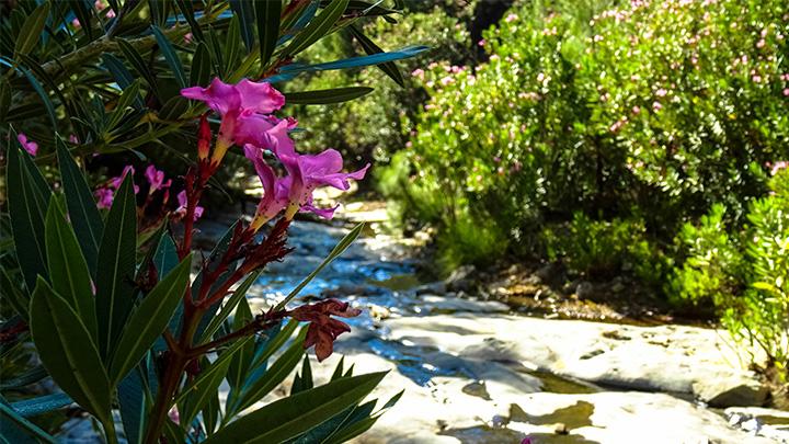 Prorider Story Trip Turkey Gokceada Waterfall Hike Hidden Treasures 2