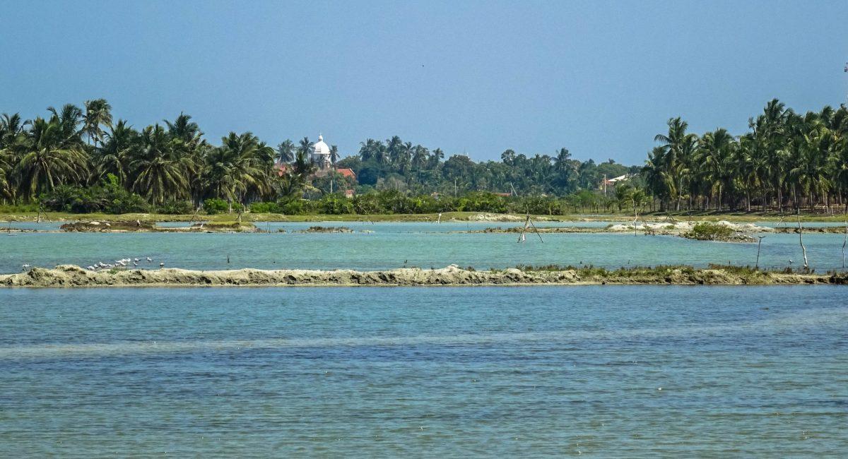 Kalpityia lagoon-SL 3